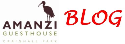 Amanzi Guest House  Blog