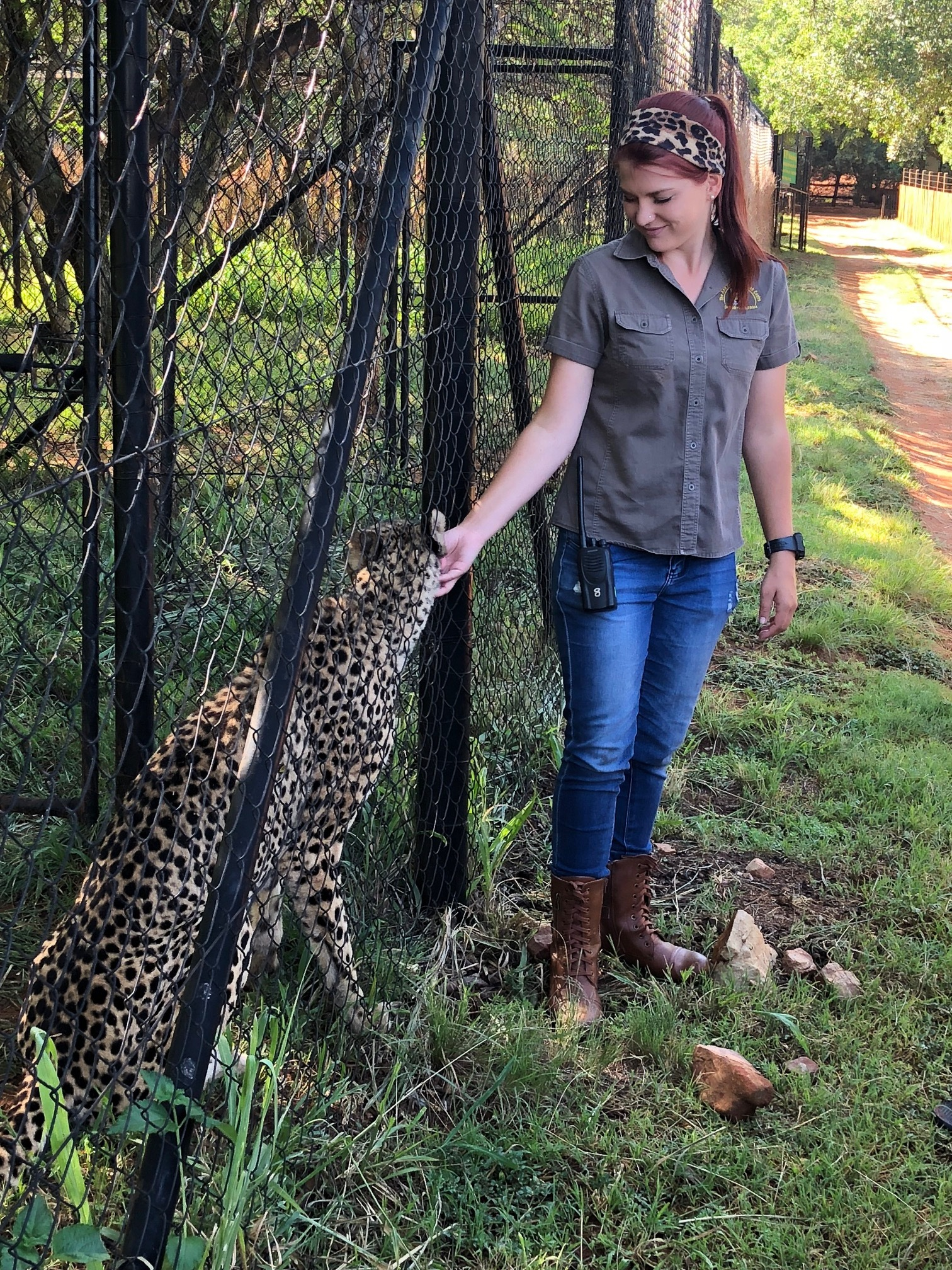 The handler at The Ann an Dyk Cheetah Centre telling guests from Amanzi Guest House about the Ambassador Cheetahs