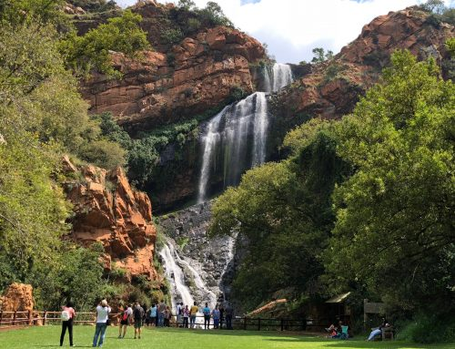 Escape to Walter Sisulu National Botanical Gardens