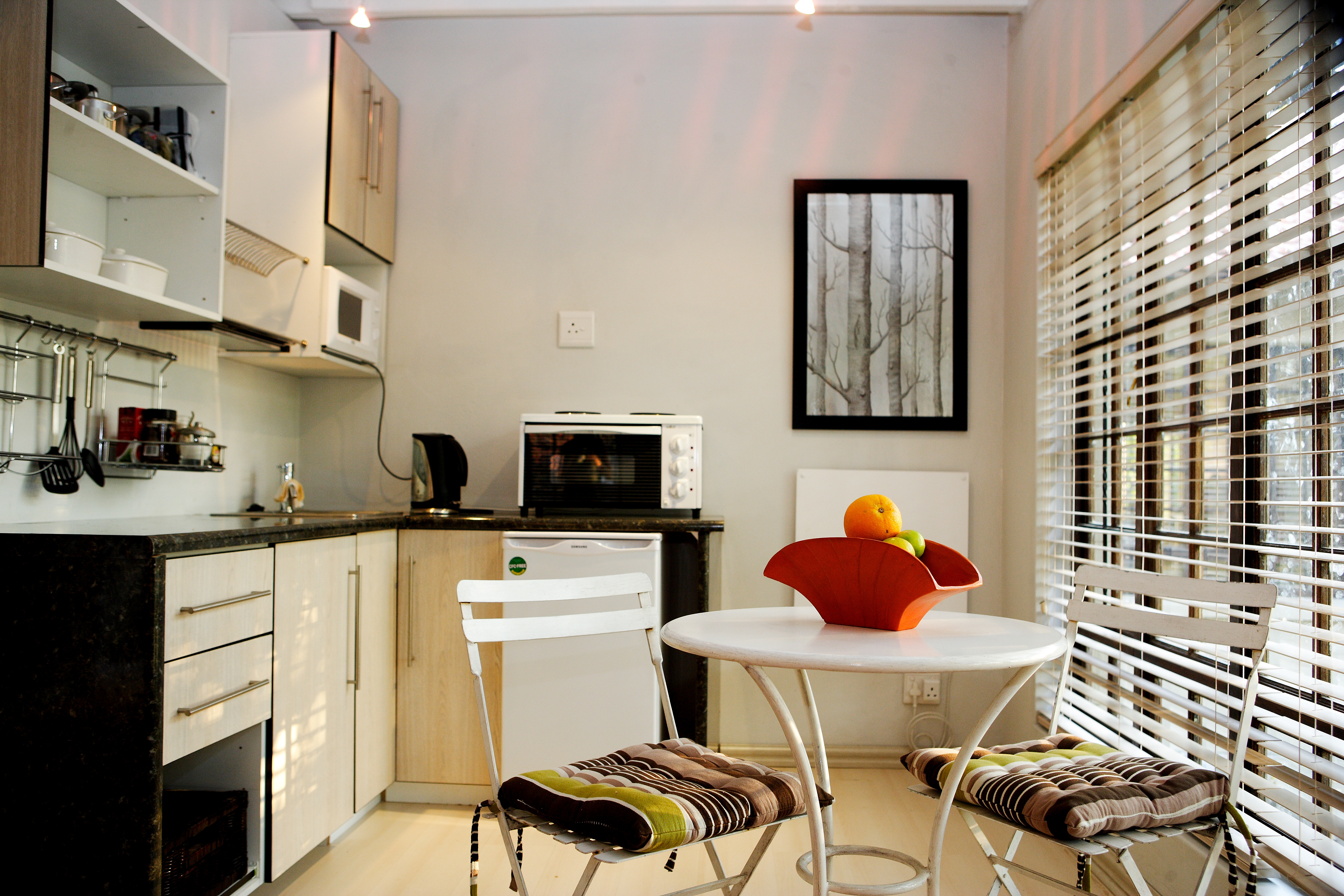 Well equipped Kitchenette in Apartment