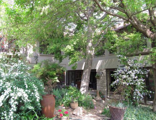 Stay at Amanzi when in Joburg for business